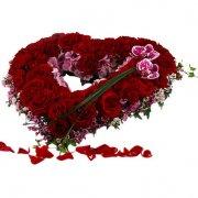 blommor till begravning göteborg